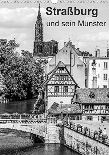 Straßburg und sein Münster (Wandkalender 2021 DIN A3 hoch)