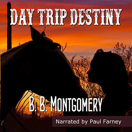 Day Trip Destiny audiobook cover art