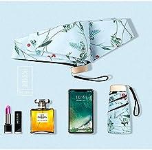 BDDLLM Paraguas Jesse KAMM Cinco Folding portátil Leve não-automática de Quatro-Cor Bolso Floral Ouro alça Plana ensolarado Guarda-chuva Mulher