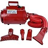 GJR-Chuishuiji 220V / 2200W Secador de Pelo Profesional para Mascotas Perro/Gato Grooming Dryer/Blower Super Motor Wind Grande/Gigante/Pequeño para Mascotas Ropa Secador de Pelo