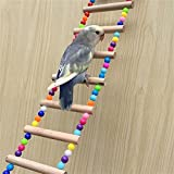 WeBetter Escalera para Loros, Juguetes para Loros De Aves, Escaleras, Juguetes para Masticar Columpios para Pájaros, Jaula para Pájaros Colgante para Mascotas, Juguete para Periquitos Pequeños