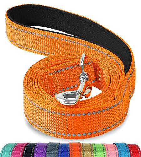 Joytale Hundeleine, Reflektierende Leine aus Nylon mit Gepolstertem Griff, 1.2m × 2cm, Orange