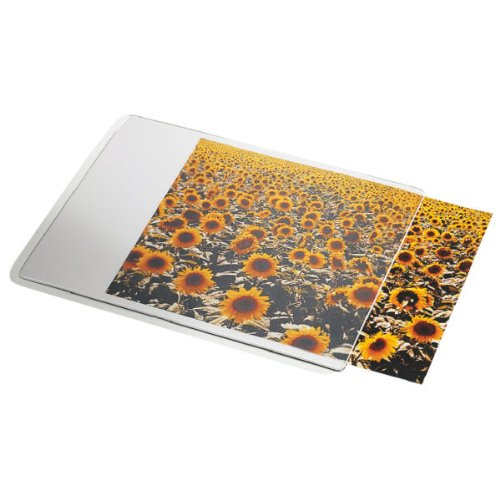 Esselte Alfombrilla personalizable, 19 x 24 cm, Transparente, 67691