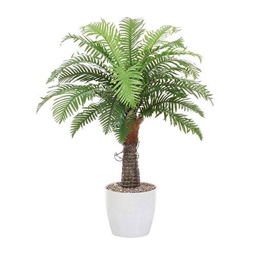 Pflanzen Kölle Künstlicher Baumfarn in weißem Keramiktopf, mit 24 Wedeln, grün, ca. 100 cm