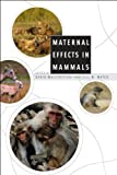 Image of Maternal Effects in Mammals