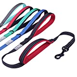 Vivaglory Dog Leash with 2 Padded Handles, Heavy Duty 4ft Long Reflective Safety Training Traffic Handle Leash Walking Lead for Small to Medium Dogs, Black