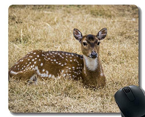 Yanteng Cojín de ratón con la Fauna del Viaje de Pakistan del Ciervo - Bordes cosidos