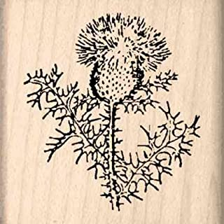 Best thistle stamp for cards Reviews