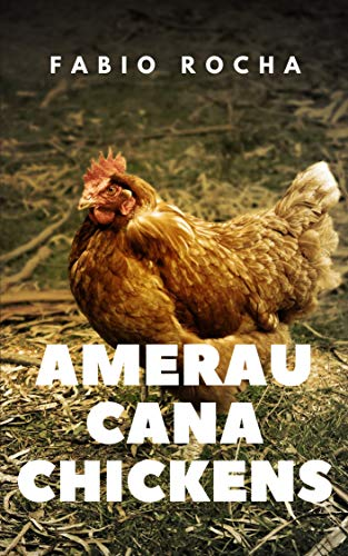 Ameraucana Chickens (English Edition)