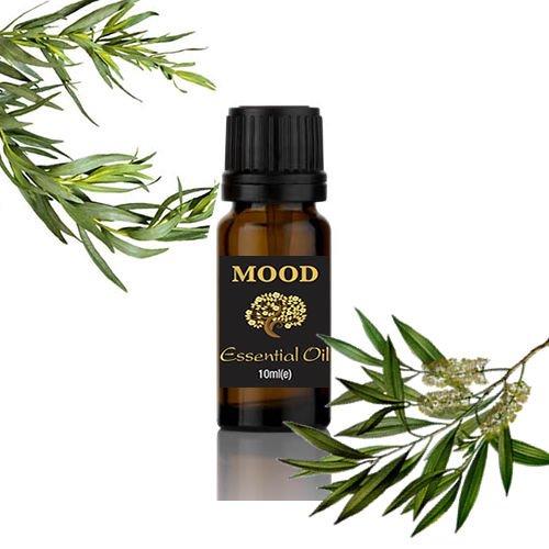 Aceite esencial de árbol de té de 100 ml