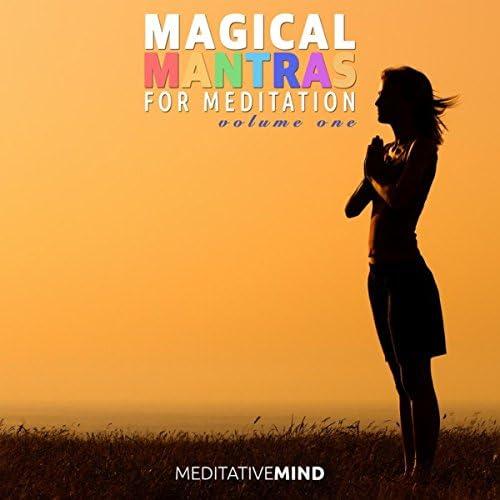 Meditative Mind