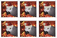 Doreen Erhardt鳥–Santa Parrot–グリーティングカード Set of 6 Greeting Cards