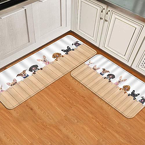 Juego de alfombrillas de cocina de 2 piezas,Diferentes perros detrás de cartel pizarra la, Alfombra antideslizante con respaldo para alfombra de cocina, lavable y duradera, alfombra de corredor