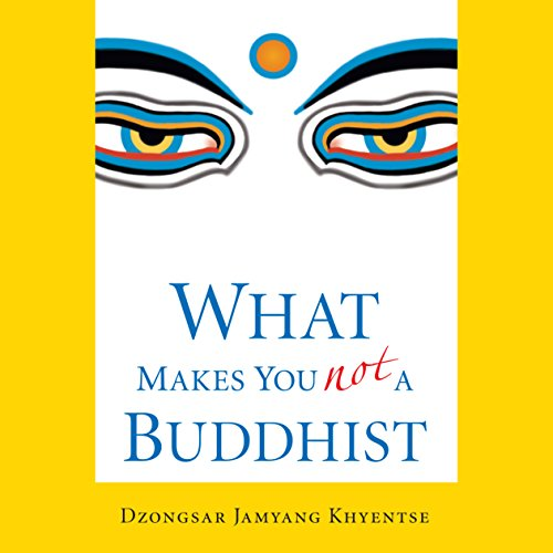 What Makes You Not a Buddhist cover art