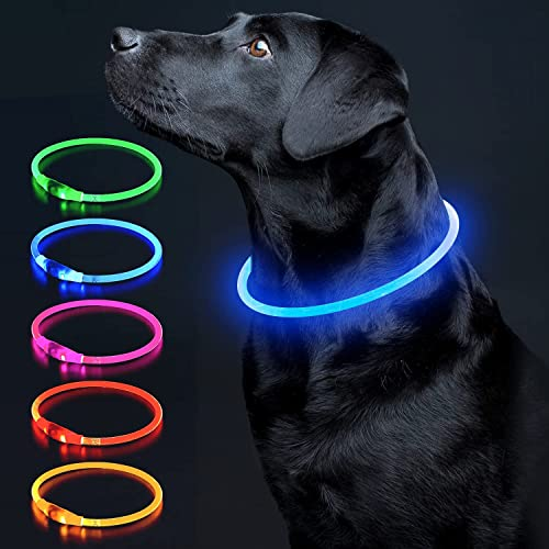 LED Dog Collar Light Up Dog Collars 1 Count Mini USB Rechargeable TPU Glow Safety Basic Dog Collars for Large Medium Small Dogs (Blue)