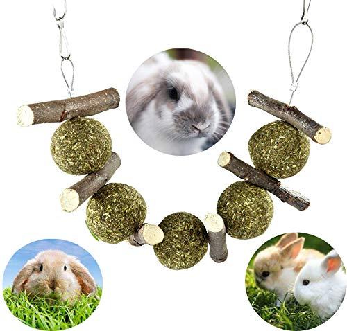 HEWADY Bunny Chew Toys for Teeth, Improve Dental...