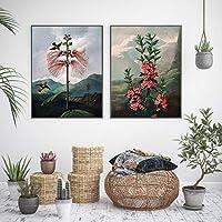 ヴィンテージ植物の花アートプリントビクトリア朝の花と鳥ハミングバードポスター庭の壁アートキャンバス絵画家の装飾-16x24インチフレームなし