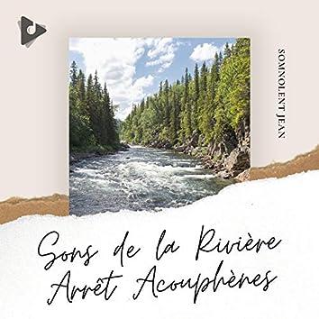 Sons de la Rivière Arrêt Acouphènes