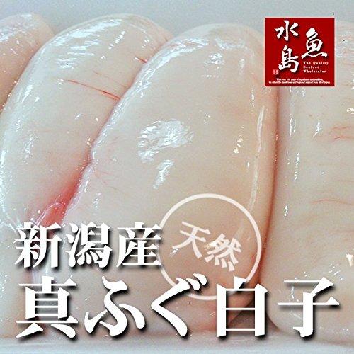 魚水島 新潟産 天然マフグ 真ふぐ白子 小ぶりサイズ 冷凍500g