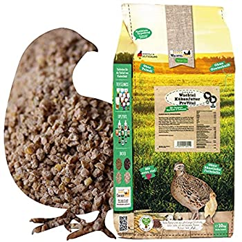 WachtelGold Nourriture pour poussin ProVital - 10 kg - Avec 28 % de protéines - Nourriture d'élevage sans OGM