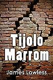 Tijolo Marrom: Por que o misterioso Sr. Washington destrói lentamente uma casa no subúrbio? (Portuguese Edition)