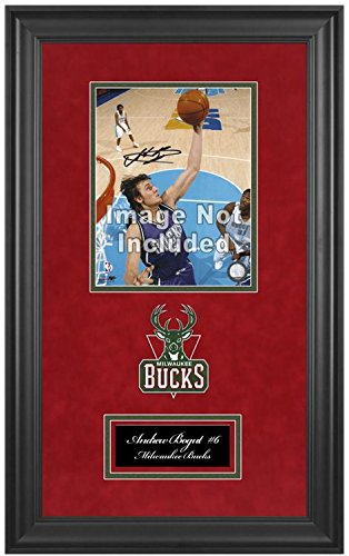 Milwaukee Bucks NBA 8x10 Photograph Team Logo and Basketball