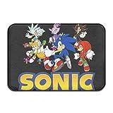 Sonic The Hedgehog Door Mats Front and Rear Door Mats Absorbent Floor Mats Non-Slip Door Carpets 23.6 X 15.7 Inches