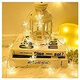Copo De Nieve Cubierta De Navidad Decoración Cadena De Luz, 12 Metros 100 LED Impermeable Al Aire Libre para La Decoración De Navidad Valla Boda del Partido del Árbol Familiar Warm White