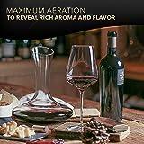 Le Chateau Weindekanter–100% mundgeblasenes bleifreies Kristallglas, Rotweinkaraffe, Weingeschenke, Weinzubehör - 4