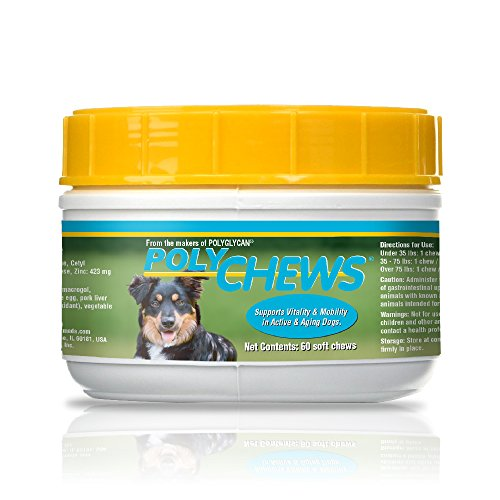 Bimeda PolyChews Large Dogs 120 Active Chews - Glucosamine, Chondroitin, L-Carnitine, Alpha Lipoic Acid & Cetyl Myristoleate – Feed Healthy Joints, Active & Older Dogs - Pasteurized Egg Immune Support