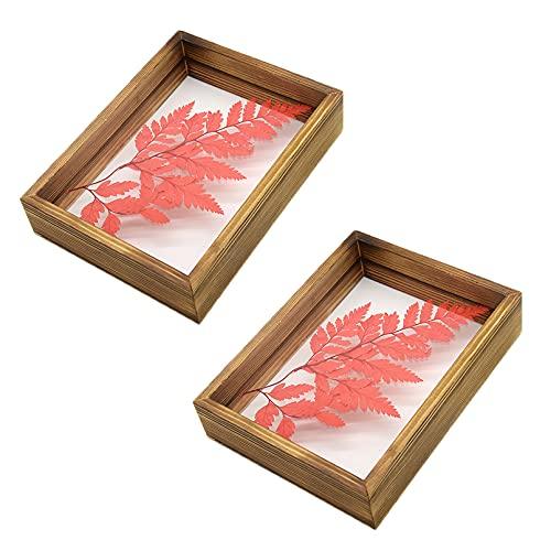 2 marcos de fotos de madera, 11 x 16 cm, doble cara, con cristal acrílico transparente para plantas, decoración de mesa, decoración del hogar, color marrón