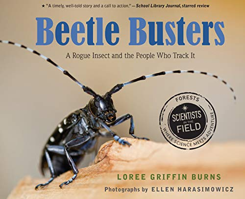 Beetle Busters: A Rogue Insect and the People Who Track It (Scientists in the Field) (English Edition)