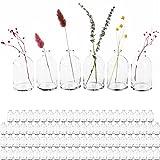 Giessle Hochzeit Saal-/ Raum- Deko Paket [ mit 88 STÜCK Mini Vasen ] Väschen kleine Dekoflaschen Blumenvase