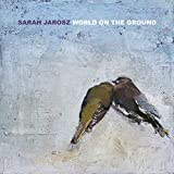 World On The Ground [Vinilo]