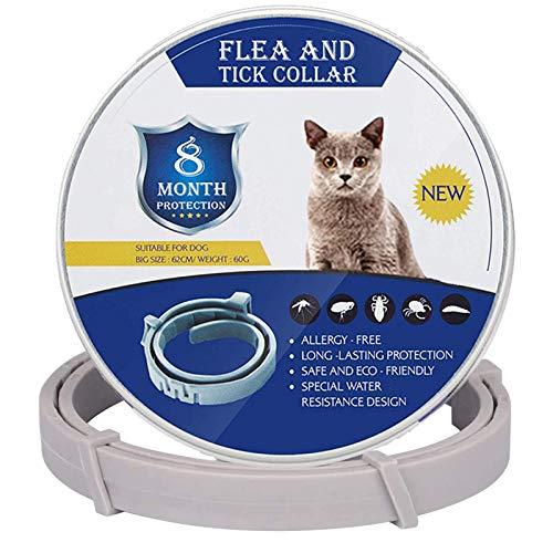 GLEADING Collar Anti Pulgas y Garrapatas para Perros y Gatos, Resistente al Agua y Ajustable-38cm, Prevención por 8 Meses Control Efectivo de Pulgas y Garrapatas