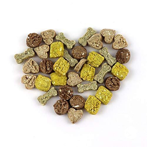 DOGBOSS vegetarische Hundekekse Premium Snack Selection | Reines Naturprodukt in Lebensmittelqualität | 100% natürliche Zutaten | Mit Herz und Liebe handgemacht | 250 g