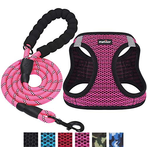 matilor 2 Packs Dog Harness Step-in Breathable Puppy Cat Dog Vest Harnesses for Small Medium Dogs