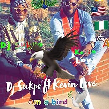 Am a Bird
