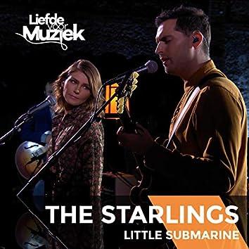 Little Submarine (Live Uit Liefde Voor Muziek)