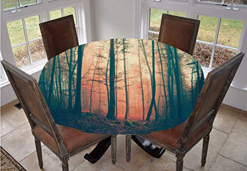 Mystic Decor Round Tablecloth,Light and Vintage Color in Mysterious Autumn Forest Woodland Nature Picture Polyester Indoor Outdoor Tablecloth,60 Inch,for Dining Room and Party Coral Dark Green