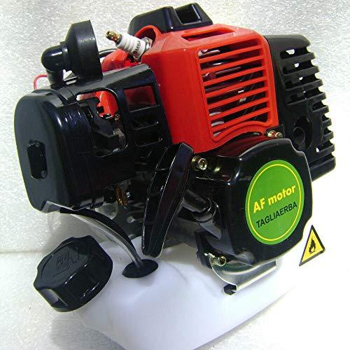 AF Blocco Motore 53cc 2,5cv DECESPUGLIATORE Taglia Erba Completo di Frizione