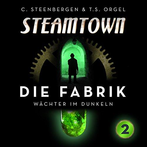 Wächter im Dunkeln (Steamtown: Die Fabrik 2) Titelbild