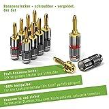 conecto CC50641 Bananenstecker High-End Professionell für alle Lautsprecherkabel mit einem