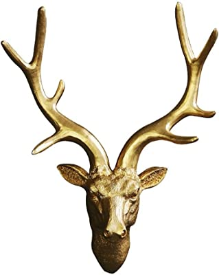 Amazon com: Things2Die4 10 Point Buck Deer Skull Bust Wall