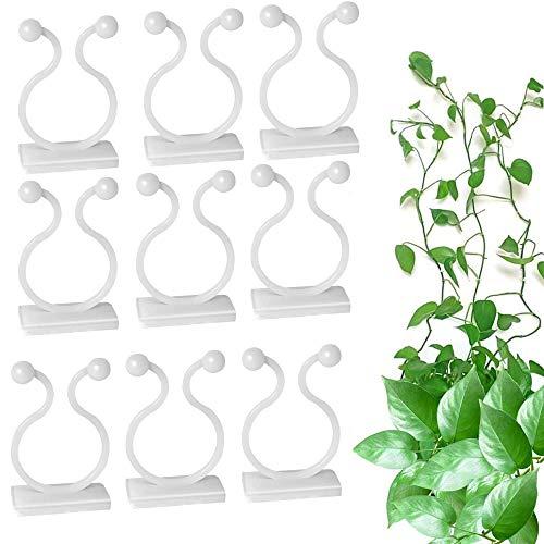 100 Stück Kletterpflanzen Clips, Wand Befestigungs Clips, Selbstklebend Pflanzenclips Pflanzenbinder, für Unterstützung und Befestigung von Pflanzen, Büro Kabelbefestigung