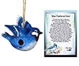 Lola Bella Gifts and Spoontiques Blue Jay Birdhouse and Blue Feathered Soul Poem Grief Sympathy Memorial Gift