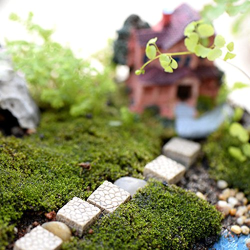 F Fityle Mini-Terrarium – 10 Stück Stein Miniatur Harz Feengarten Mikro-Landschaft Basteln Bonsai-Terrarium Zubehör