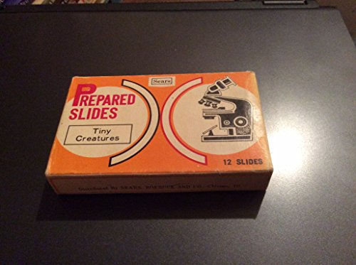 Set of 11 Sears Microscope Slides From the 1960s - Tiny Creatures