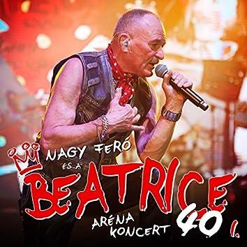 40 - Aréna koncert I.