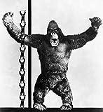 The Poster Corp King Kong 1933. Kunstdruck (45,72 x 60,96